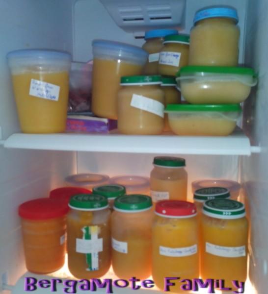 Congeler Les Petits Pots Maison De Bebe Bergamote Family