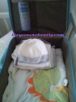 valise bébé bergamote