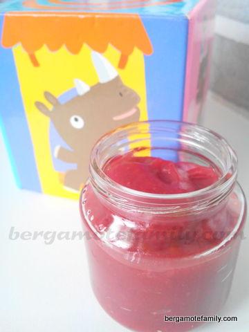 compote rhubarbe mûre
