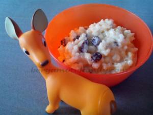 Riz au lait gourmand Canelle et raisins secs - Bergamote Family