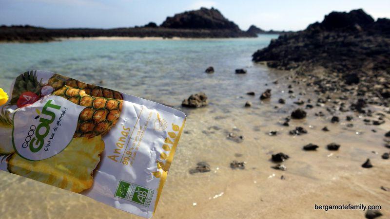 Good Gout aux Canaries Avec bergamoteFamily (île Lobos)