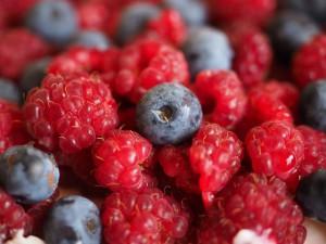 blueberries-693654_640