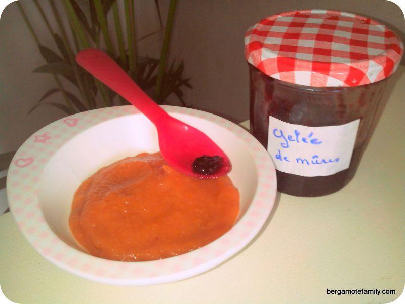 compote pomme abricot gelée mûres