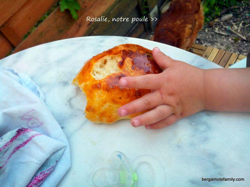 petit pain au lait petit lait - bergamote family (4)