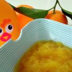 compote aux figues de barbarie – bergamote family (3)