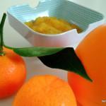 compote aux figues de barbarie – bergamote family (5)