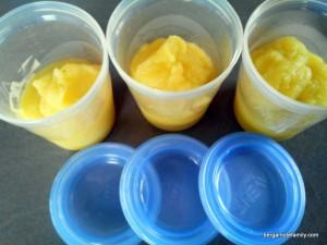 purée panais et betterave jaune - bergamote family (2)