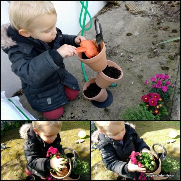 jardinage botanic - bergamote family (2)