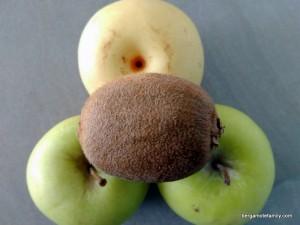 compote pomme nashi kiwi (3)