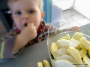 compote pomme nashi kiwi (5)