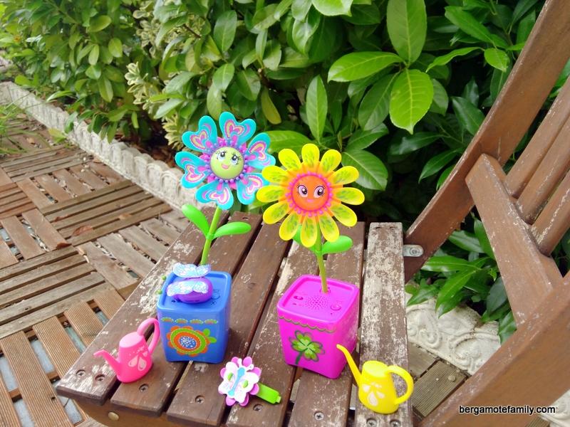 magic blooms - bergamote family (1)