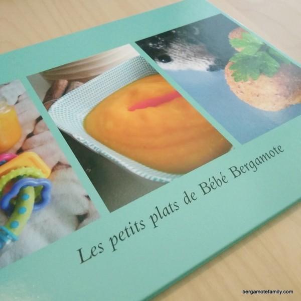 livre photo snapfish - bergamote family (2)