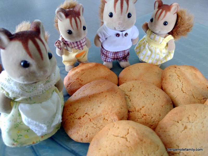 biscuits-a-la-noisette-bergamote-family
