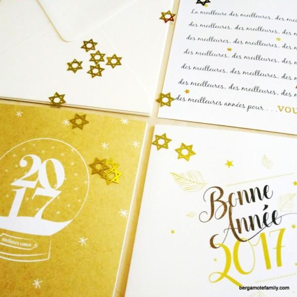 cartes-de-voeux-popcarte-2017-bergamote-family