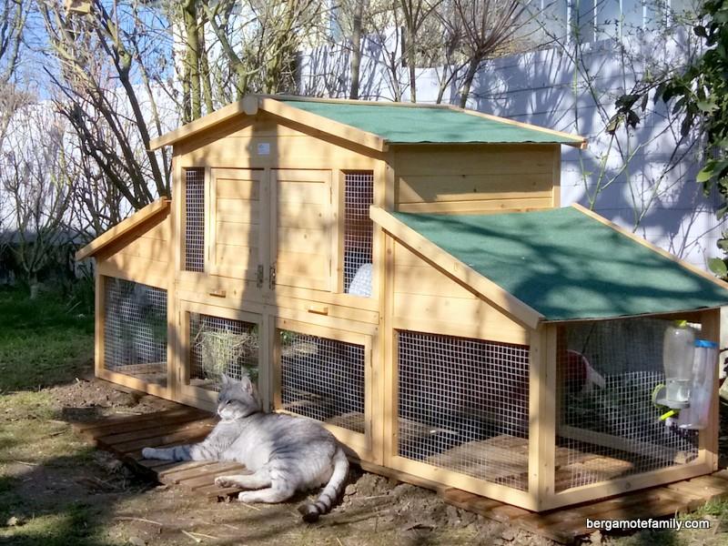 Accueillir les animaux du jardin bergamote family - Les animaux du jardin ...